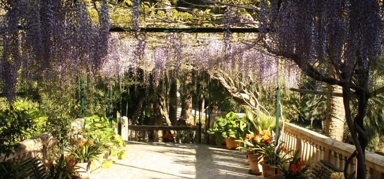 Los_jardines_26